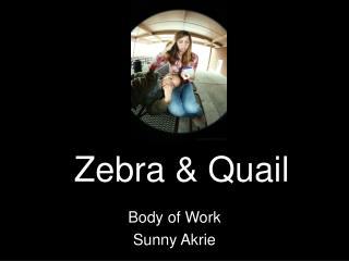 Zebra & Quail