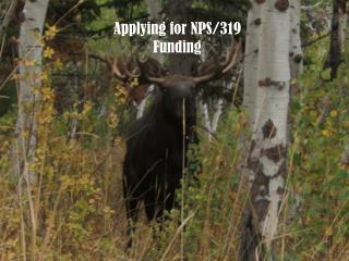 Applying for NPS/319 Funding