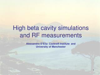 High beta cavity simulations and RF measurements