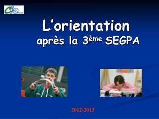 L�orientation apr�s la 3 �me  SEGPA