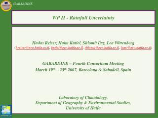 WP II - Rainfall Uncertainty