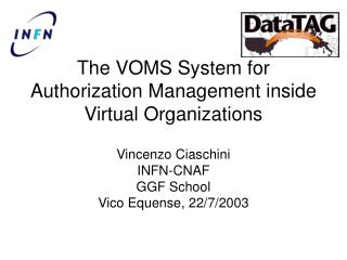 The VOMS System for Authorization Management inside Virtual Organizations