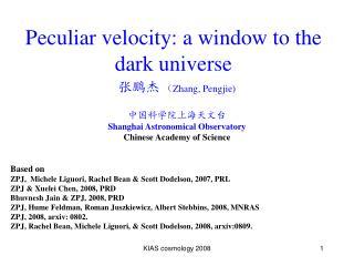 Peculiar velocity: a window to the dark universe
