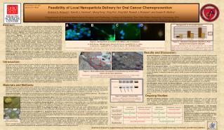 Feasibility of Local Nanoparticle Delivery for Oral Cancer Chemoprevention