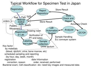 Typical Workflow for Specimen Test in Japan