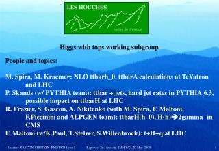 Higgs with tops working subgroup