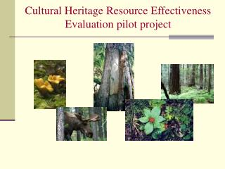 Cultural Heritage Resource Effectiveness Evaluation pilot project