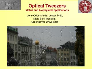 Optical Tweezers status and biophysical applications