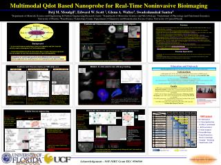 Multimodal Qdot Based Nanoprobe for Real-Time Noninvasive Bioimaging