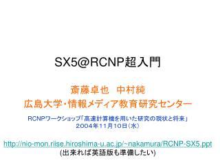SX5@RCNP 超入門
