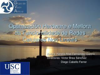 Optimización Hardware e Mellora da Funcionalidade de Redes Celulares Non Lineais