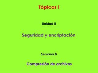 Tópicos I