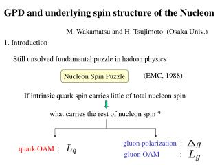 GPD and underlying spin structure of the Nucleon