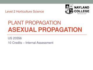 Plant Propagation ASEXUAL PROPAGATION