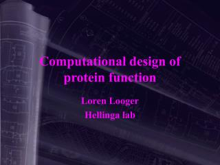 Computational design of protein function