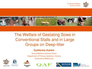 The Welfare of Gestating Sows in Conventional Stalls and in Large Groups on Deep-litter
