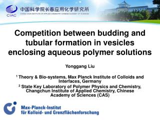 Competition between budding and tubular formation in vesicles enclosing aqueous polymer solutions