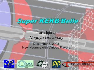 Super KEKB/Belle
