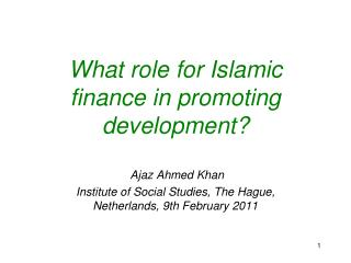 What role for Islamic finance in promoting development?