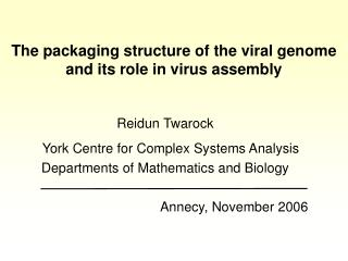 The packaging structure of the viral genome and its role in virus assembly