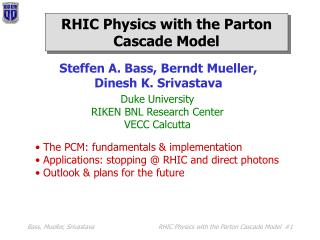 RHIC Physics with the Parton Cascade Model