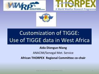 Customization of TIGGE: Use of TIGGE data in West Africa