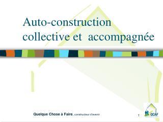 Auto-construction collective et  accompagnée