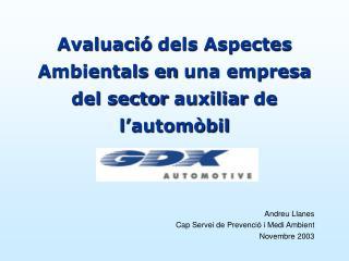 Avaluació  dels Aspectes Ambientals en  una empresa del sector  auxiliar  de l'automòbil
