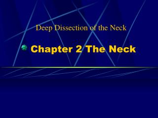 Chapter 2 The Neck