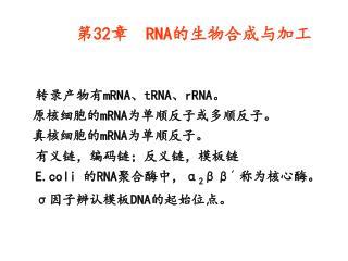第 32 章   RNA 的生物合成与加工