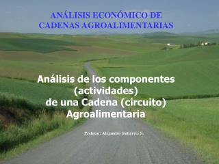 Profesor: Alejandro Guti�rrez S.