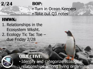HMWK: Relationships in the Ecosystem Wksht.  Ecology Tic Tac Toe – due Friday 2/28