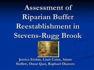 Assessment of Riparian Buffer Reestablishment in Stevens-Rugg Brook