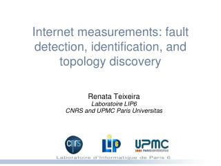 Internet measurements: fault detection, identification, and topology discovery