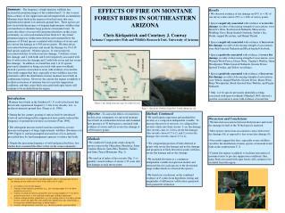 EFFECTS OF FIRE ON MONTANE FOREST BIRDS IN SOUTHEASTERN ARIZONA