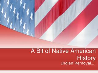 A Bit of Native American History