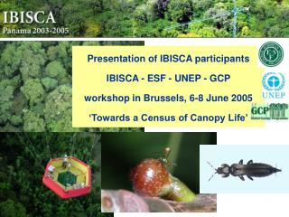 Presentation of IBISCA participants IBISCA - ESF - UNEP - GCP workshop in Brussels, 6-8 June 2005