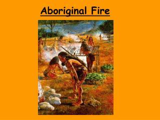 Aboriginal Fire
