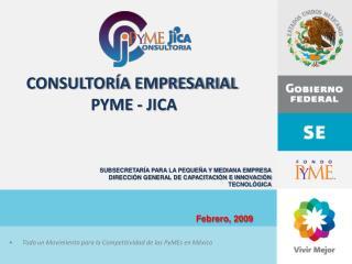 CONSULTORÍA EMPRESARIAL  PYME - JICA