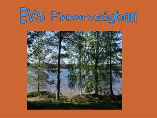 Az EVS (Európai önkéntes szolgálat)