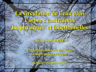 Hervé COCHARD  UMR-PIAF, INRA site de Crouël,  63100 Clermont-Ferrand cochard@clermontra.fr