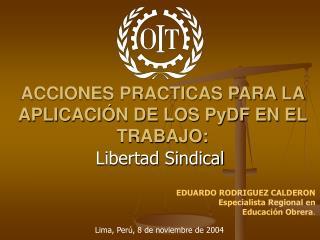 ACCIONES PRACTICAS PARA LA APLICACIÓN DE LOS PyDF EN EL TRABAJO: