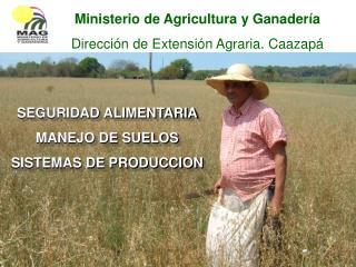 SEGURIDAD ALIMENTARIA MANEJO DE SUELOS   SISTEMAS DE PRODUCCION