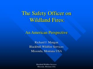 The Safety Officer on  Wildland Fires:  An American Perspective