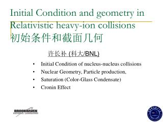 Initial Condition and geometry in Relativistic heavy-ion collisions 初始条件和截面几何