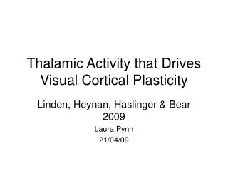 Thalamic Activity that Drives Visual Cortical Plasticity