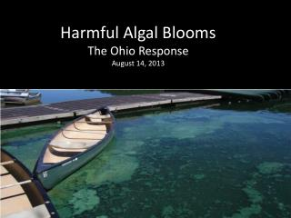 Harmful Algal Blooms The Ohio Response August 14, 2013