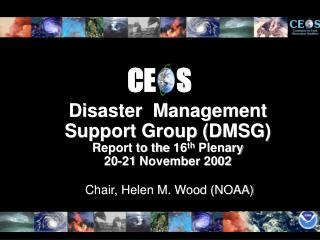 Disaster  Management Support Group (DMSG) Report to the 16 th  Plenary 20-21 November 2002