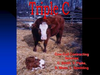 Cow-Calf Contracting Services C. Smith, V. Pipke,  D. Moen, L. Spedding