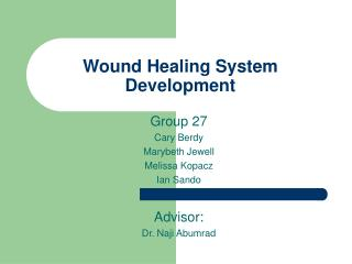 Wound Healing System Development